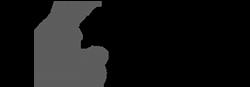 la crónica de salamanca logotipo