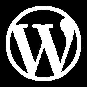categoría wordpress y wpo